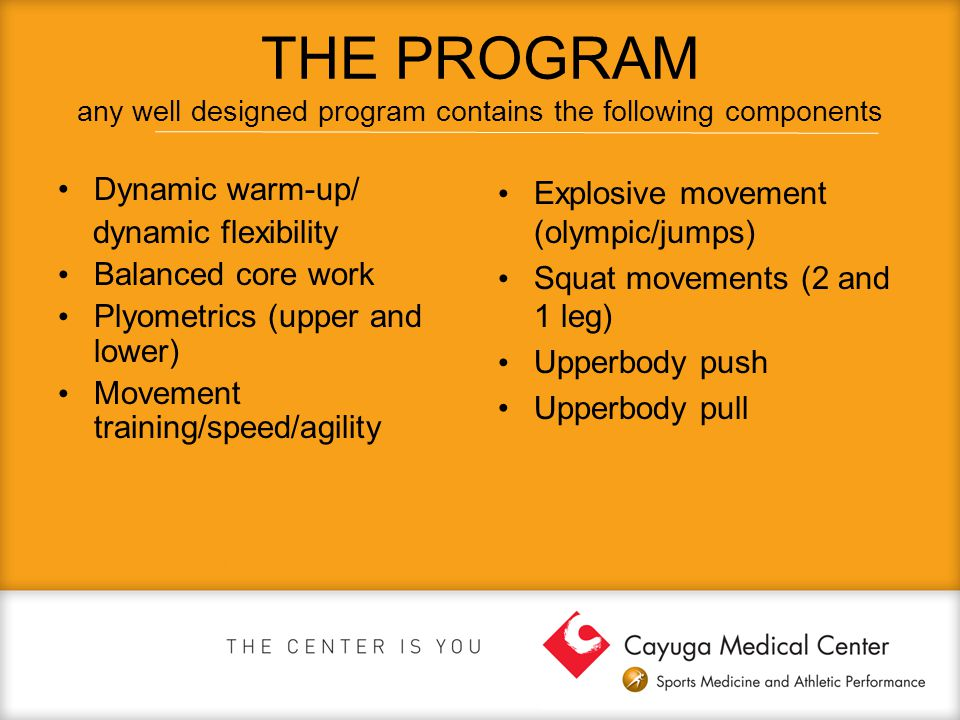 THE PROGRAM any well designed program contains the following components