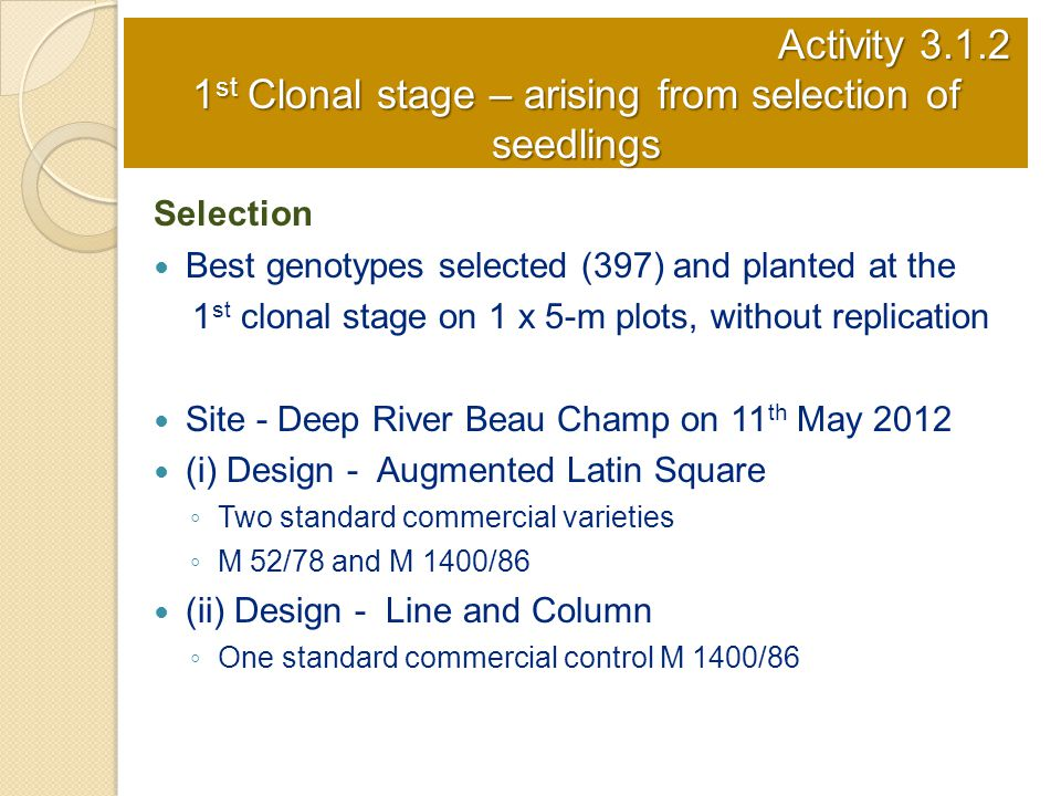 Activity 3.1.2 1st Clonal stage – arising from selection of seedlings