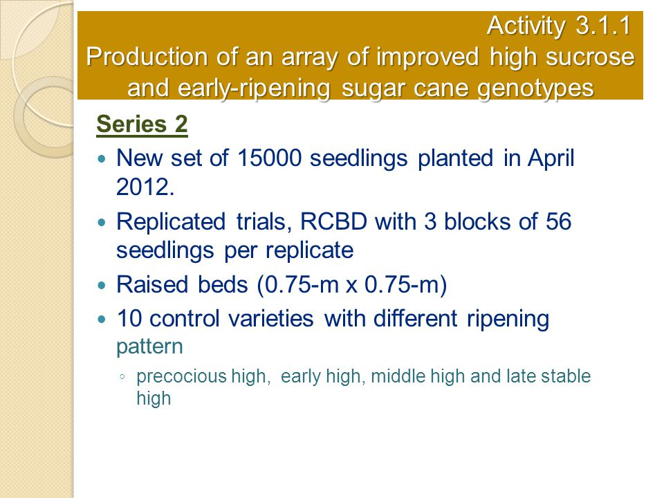 Activity 3.1.1 Production of an array of improved high sucrose and early-ripening sugar cane genotypes