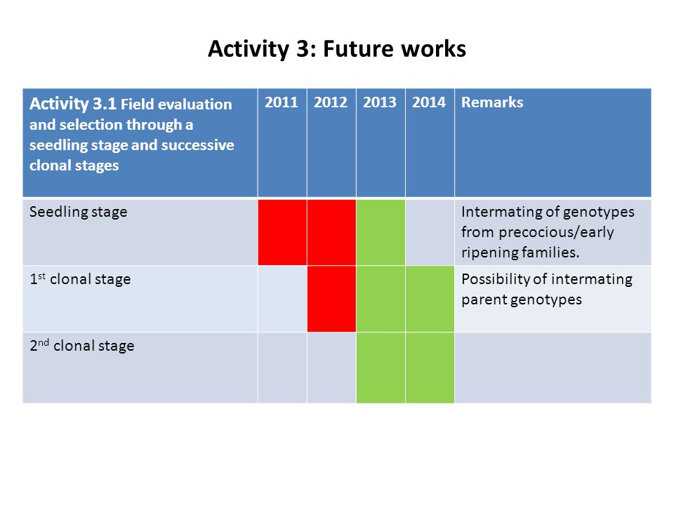 Activity 3: Future works