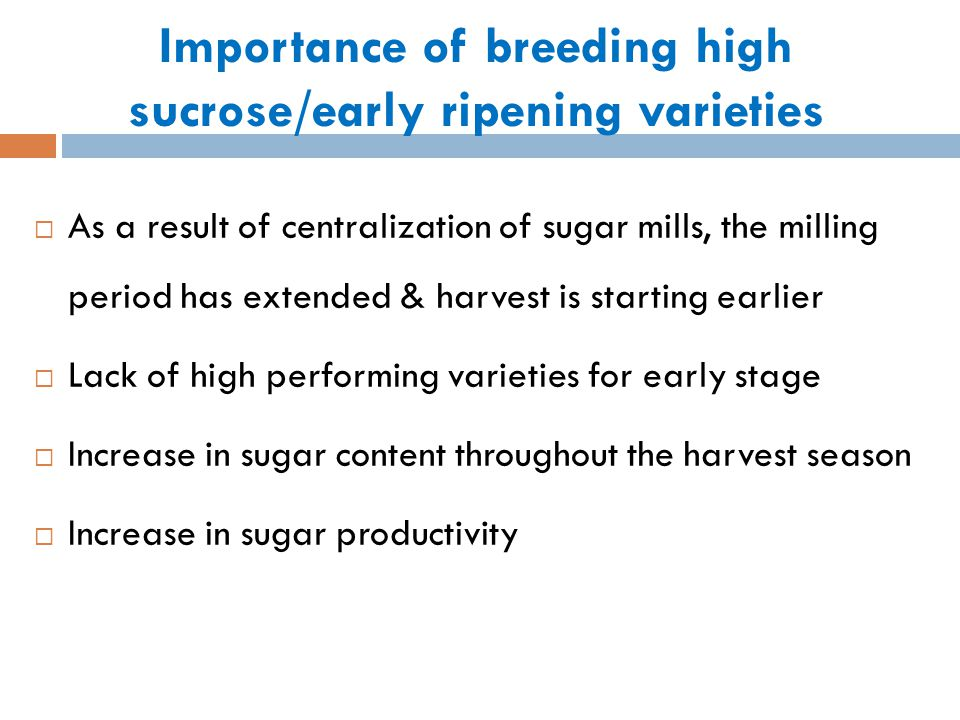 Importance of breeding high sucrose/early ripening varieties