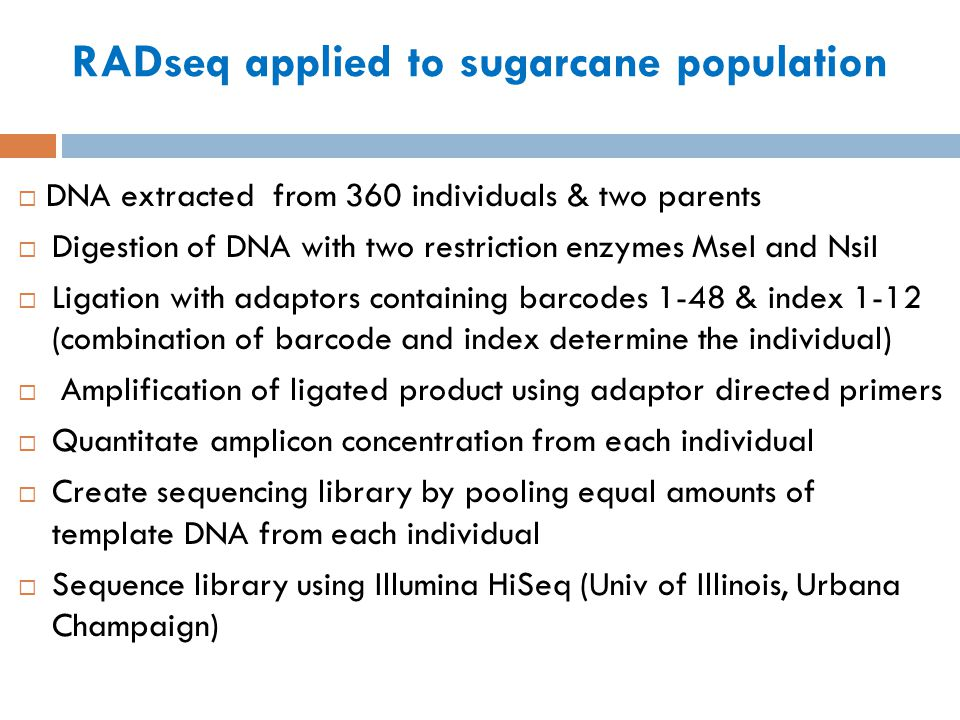 RADseq applied to sugarcane population