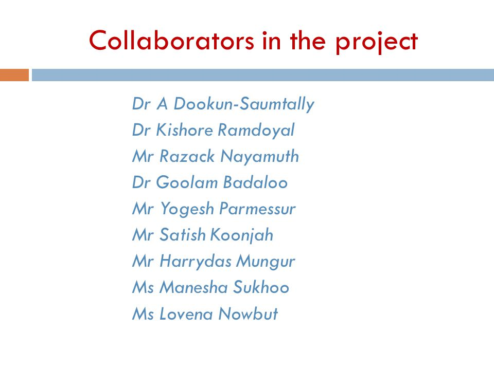 Collaborators in the project