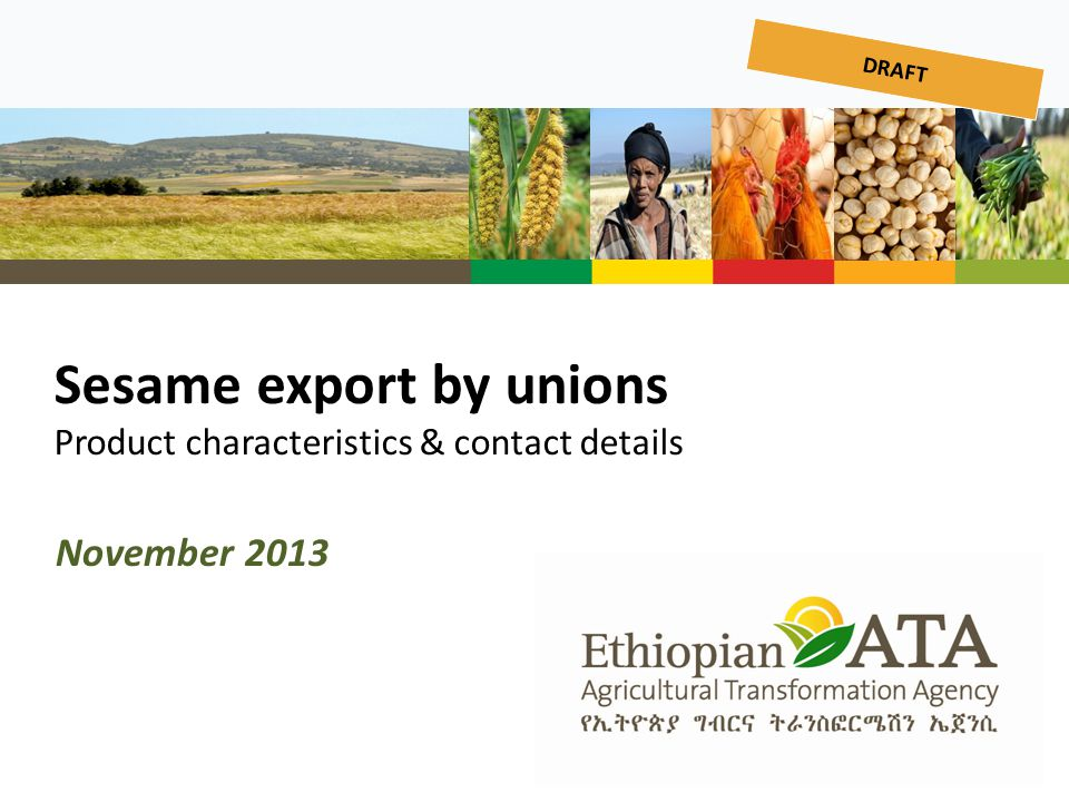 Sesame export by unions Product characteristics & contact details
