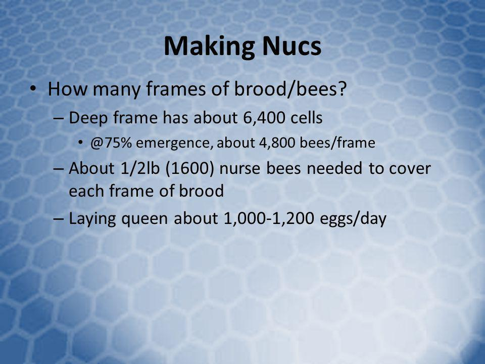 Making Nucs How many frames of brood/bees