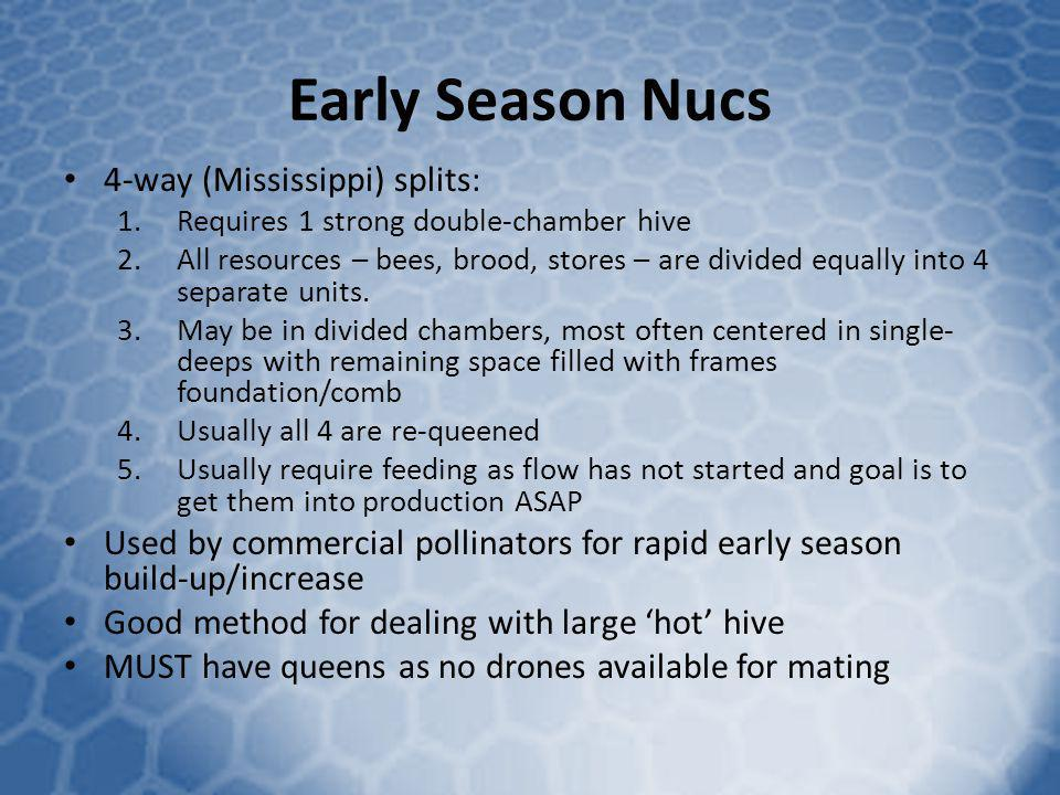 Early Season Nucs 4-way (Mississippi) splits: