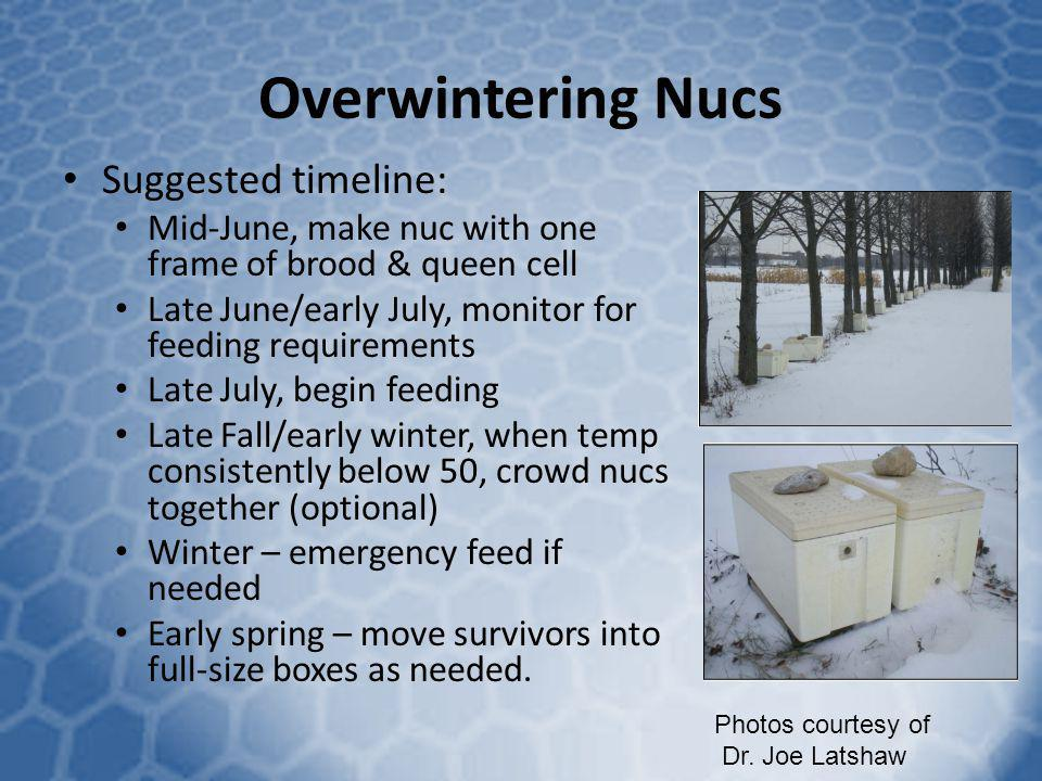 Overwintering Nucs Suggested timeline:
