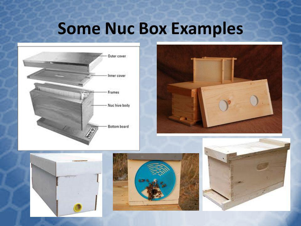 Some Nuc Box Examples