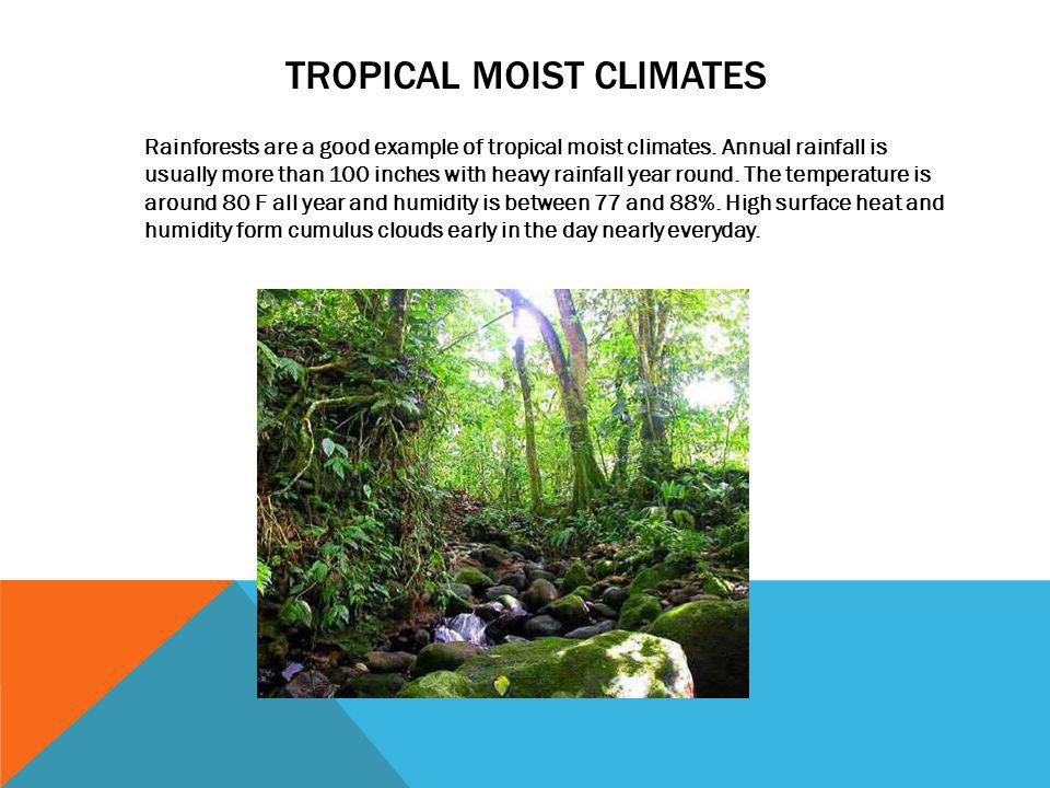 Tropical moist climates