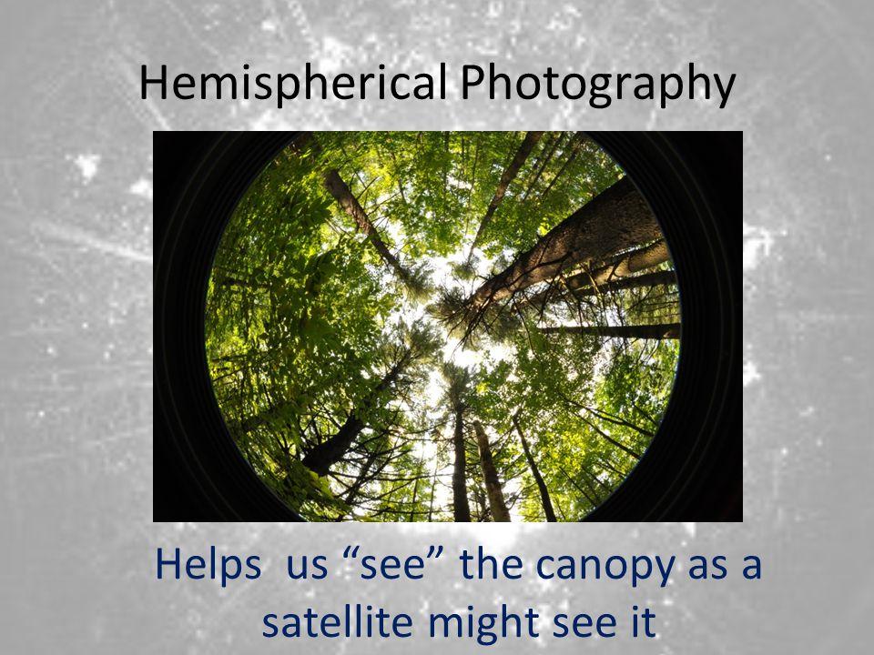 Hemispherical Photography