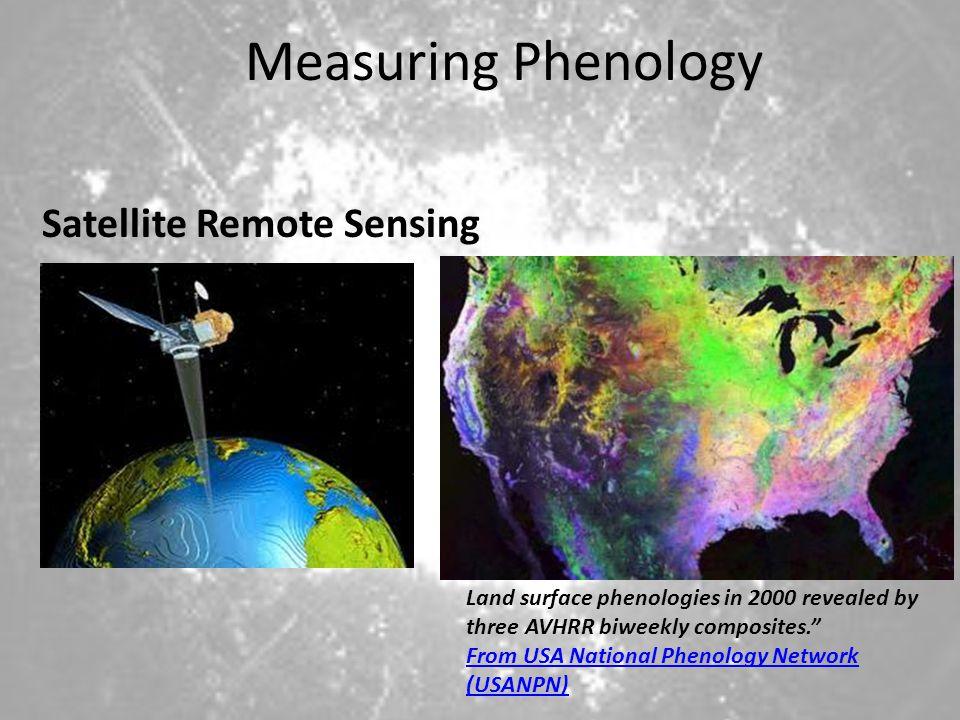 Measuring Phenology Satellite Remote Sensing