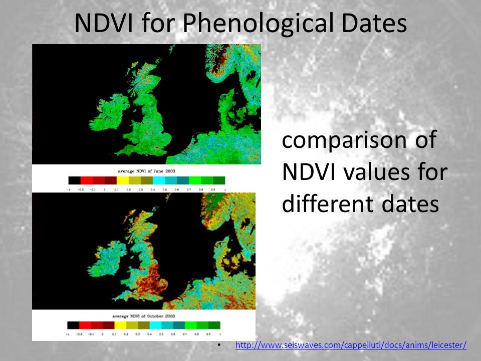 NDVI for Phenological Dates