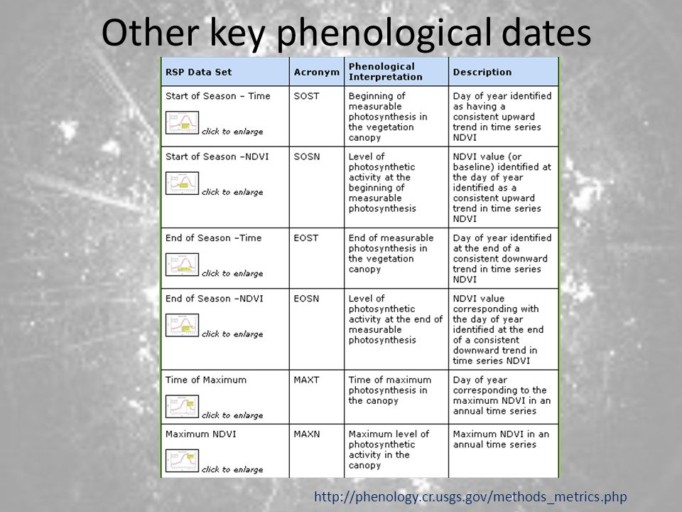 Other key phenological dates
