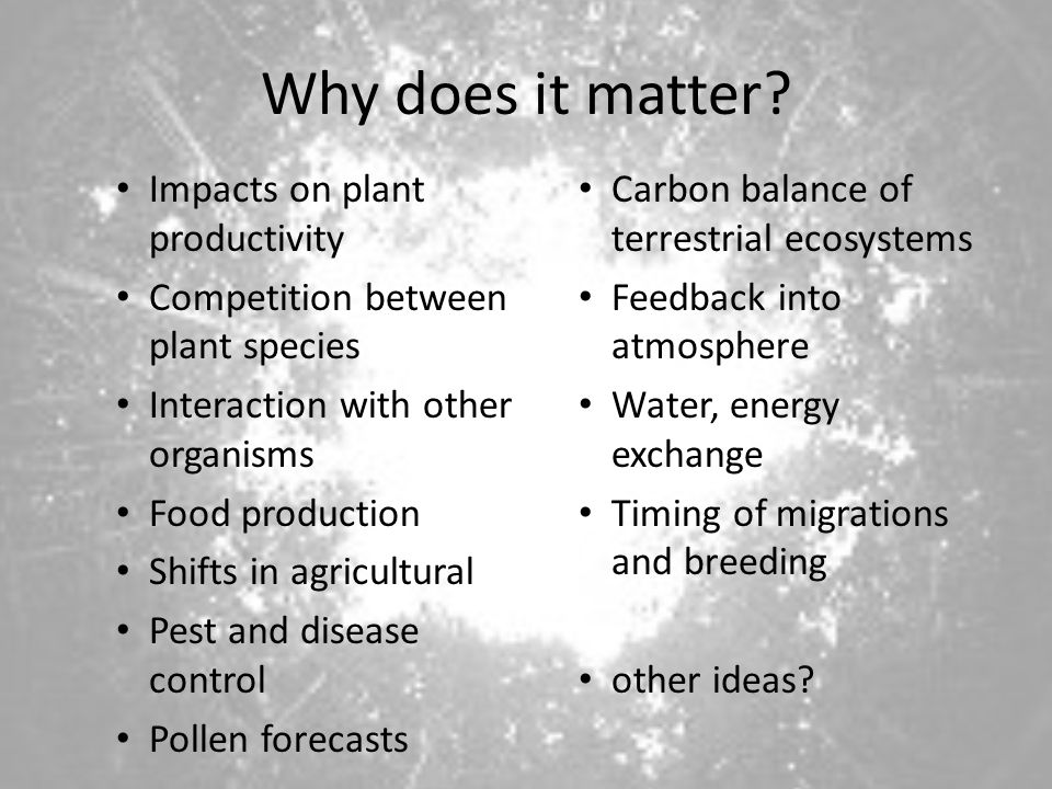 Why does it matter Impacts on plant productivity