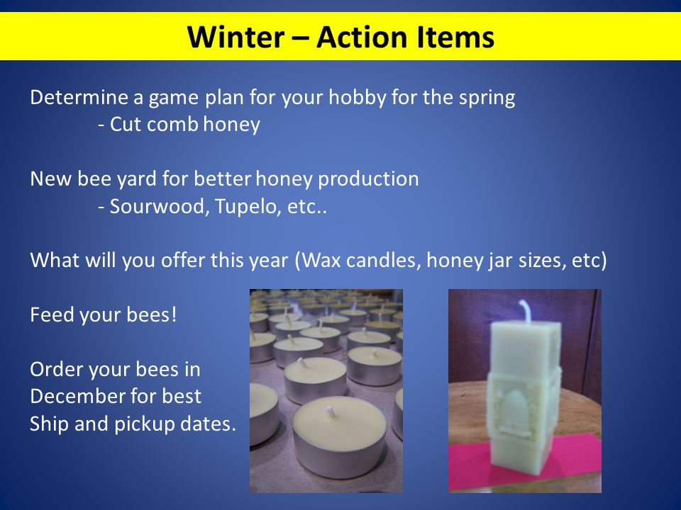 Winter – Action Items Determine a game plan for your hobby for the spring. - Cut comb honey. New bee yard for better honey production.