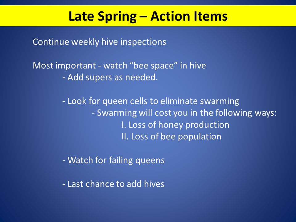 Late Spring – Action Items