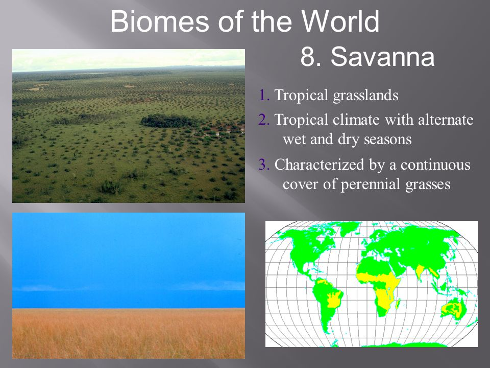 Biomes of the World 8. Savanna 1. Tropical grasslands