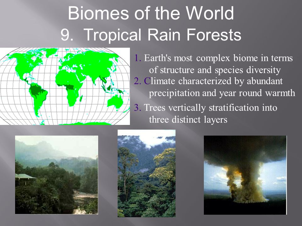 Biomes of the World 9. Tropical Rain Forests