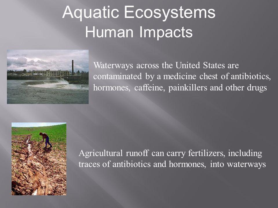 Aquatic Ecosystems Human Impacts