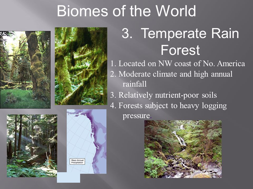 Biomes of the World 3. Temperate Rain Forest