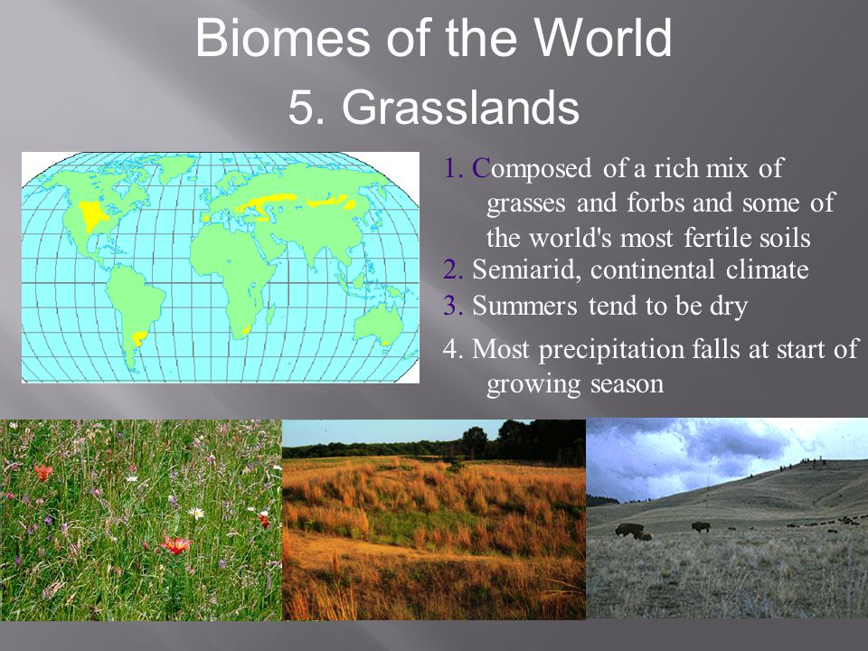 Biomes of the World 5. Grasslands