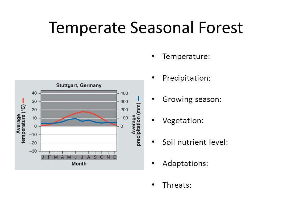 Temperate Seasonal Forest