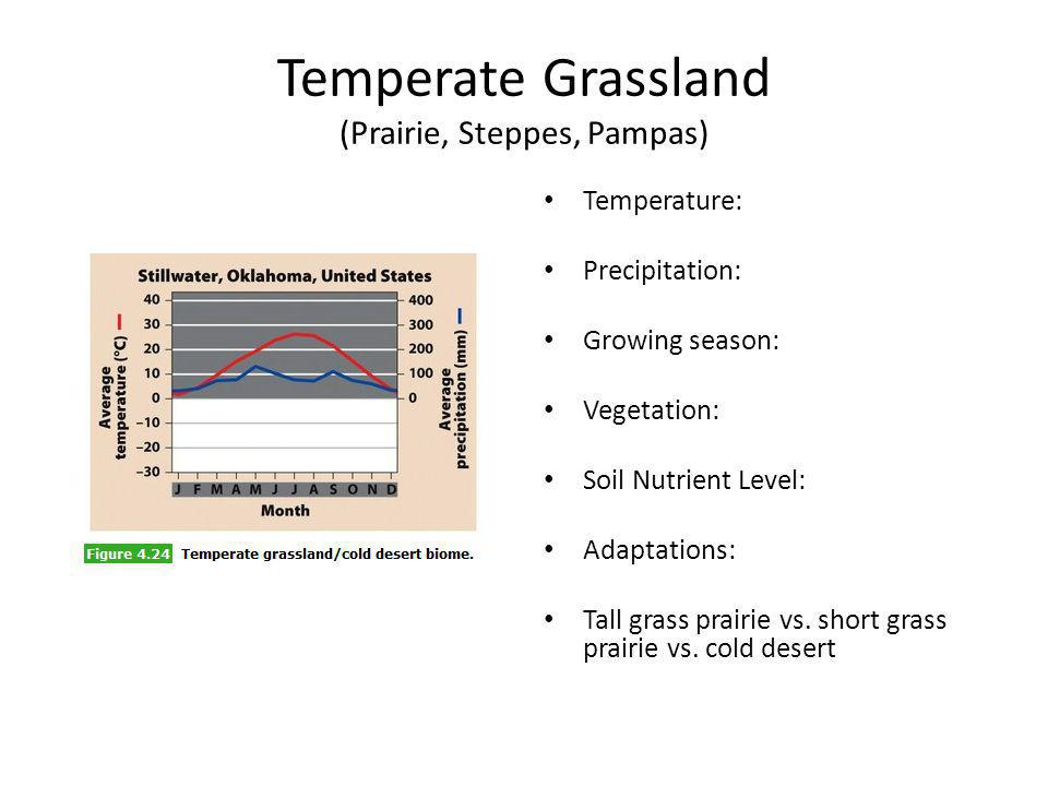 Temperate Grassland (Prairie, Steppes, Pampas)