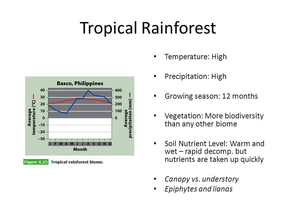 Tropical Rainforest Temperature: High Precipitation: High