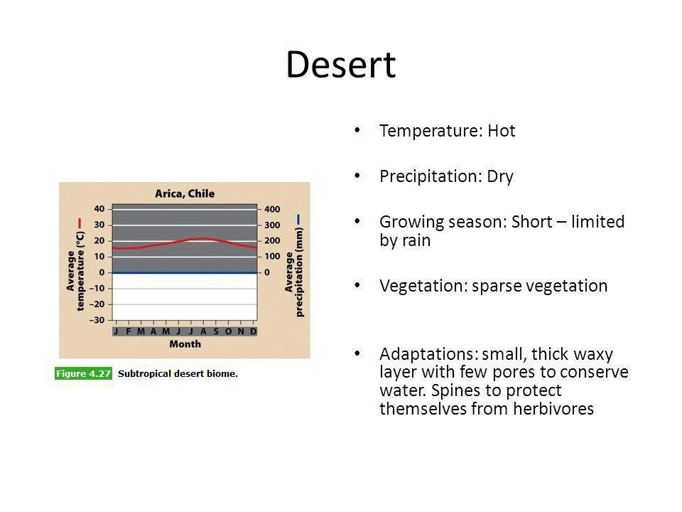 Desert Temperature: Hot Precipitation: Dry