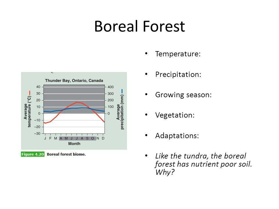 Boreal Forest Temperature: Precipitation: Growing season: Vegetation: