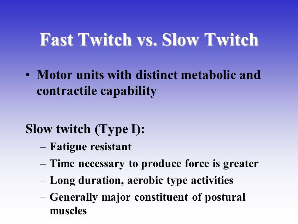 Fast Twitch vs. Slow Twitch