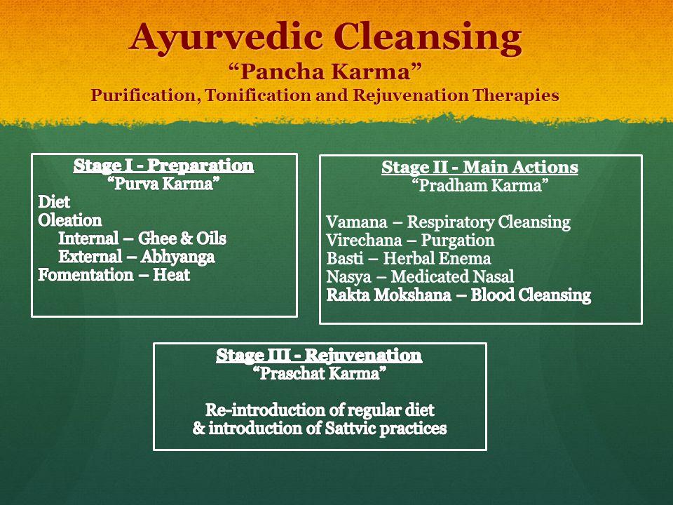Stage III - Rejuvenation