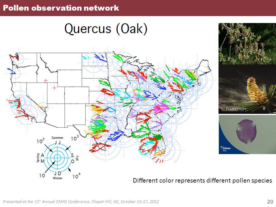 Pollen observation network