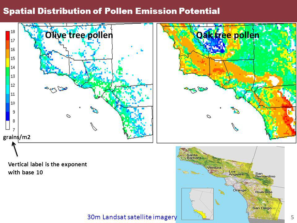 Spatial Distribution of Pollen Emission Potential