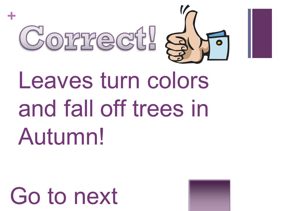 Correct! Leaves turn colors and fall off trees in Autumn!