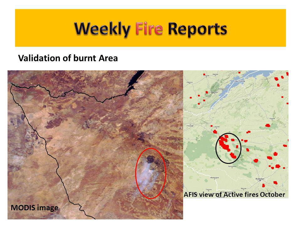 Weekly Fire Reports Validation of burnt Area MODIS image