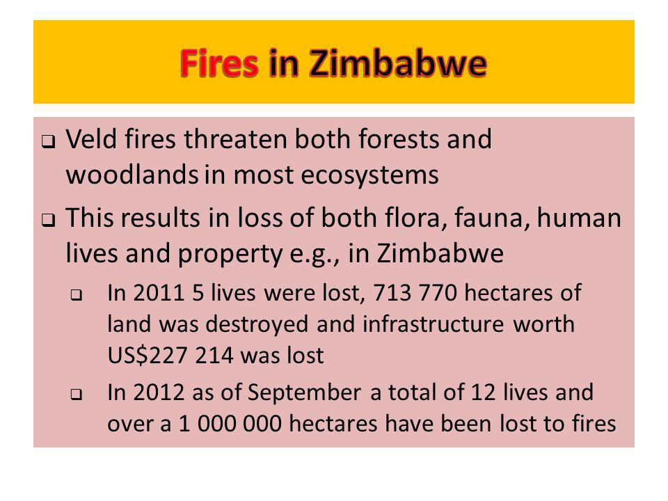 Fires in Zimbabwe Veld fires threaten both forests and woodlands in most ecosystems.