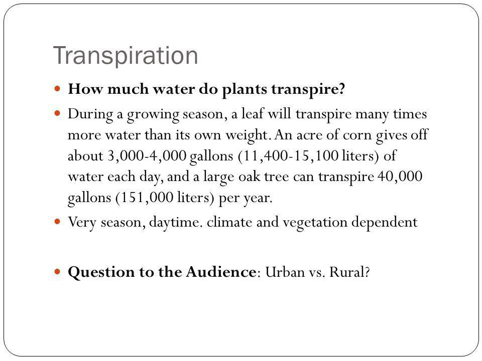 Transpiration How much water do plants transpire