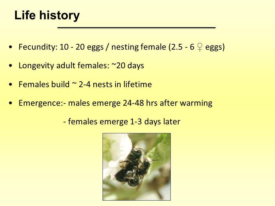 Life history Fecundity: 10 - 20 eggs / nesting female (2.5 - 6 ♀ eggs)