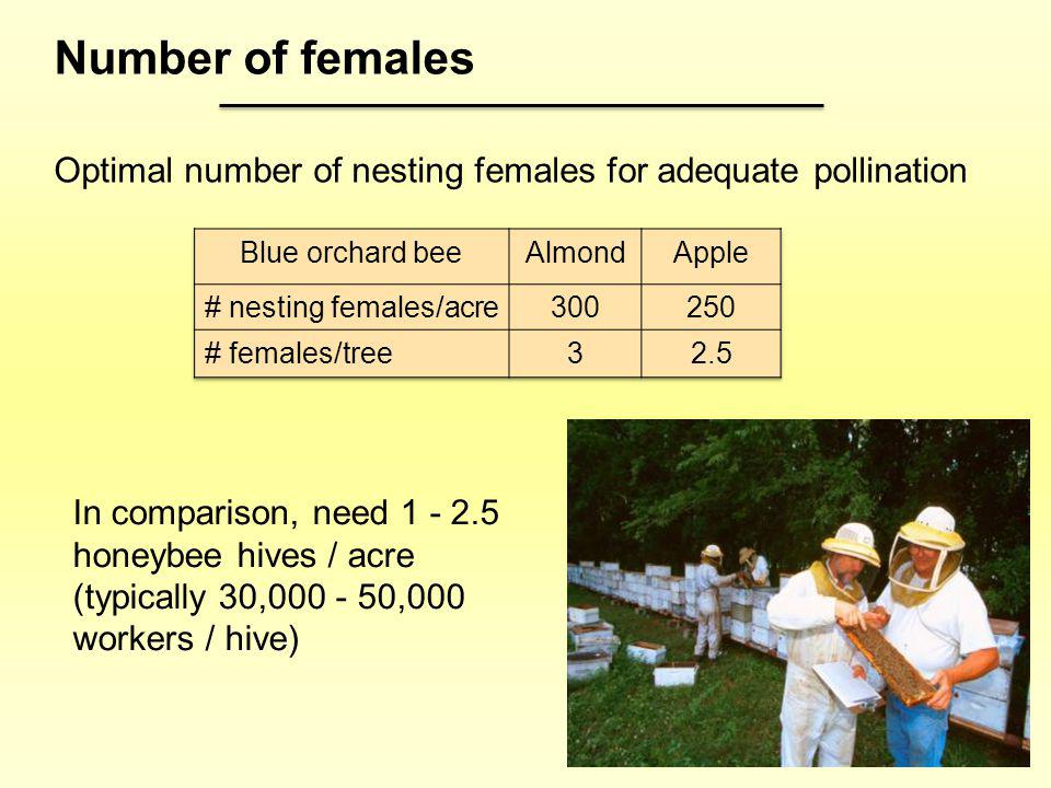 Number of females Optimal number of nesting females for adequate pollination. Blue orchard bee. Almond.