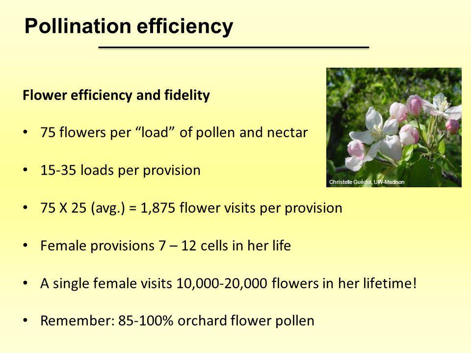 Pollination efficiency