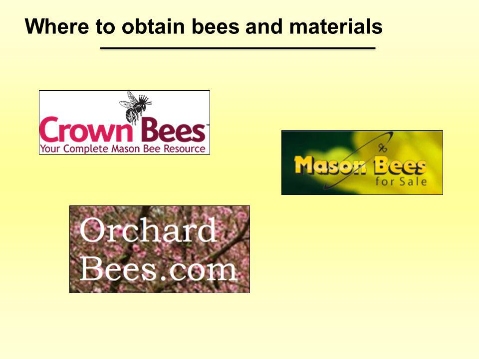 Where to obtain bees and materials