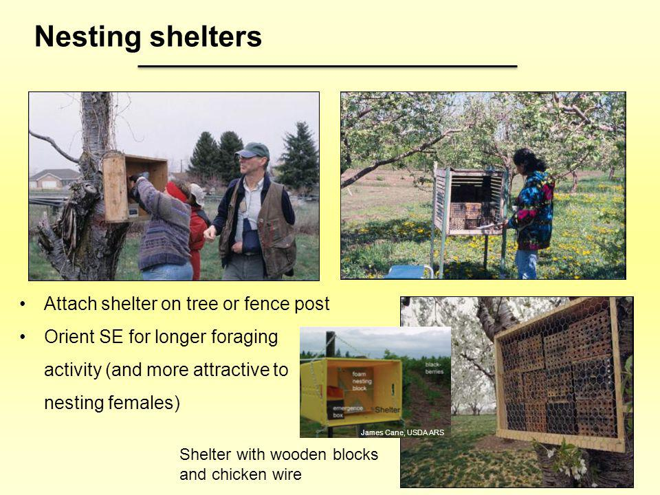Nesting shelters Attach shelter on tree or fence post