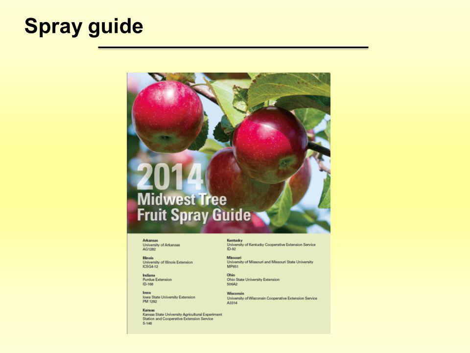 Spray guide