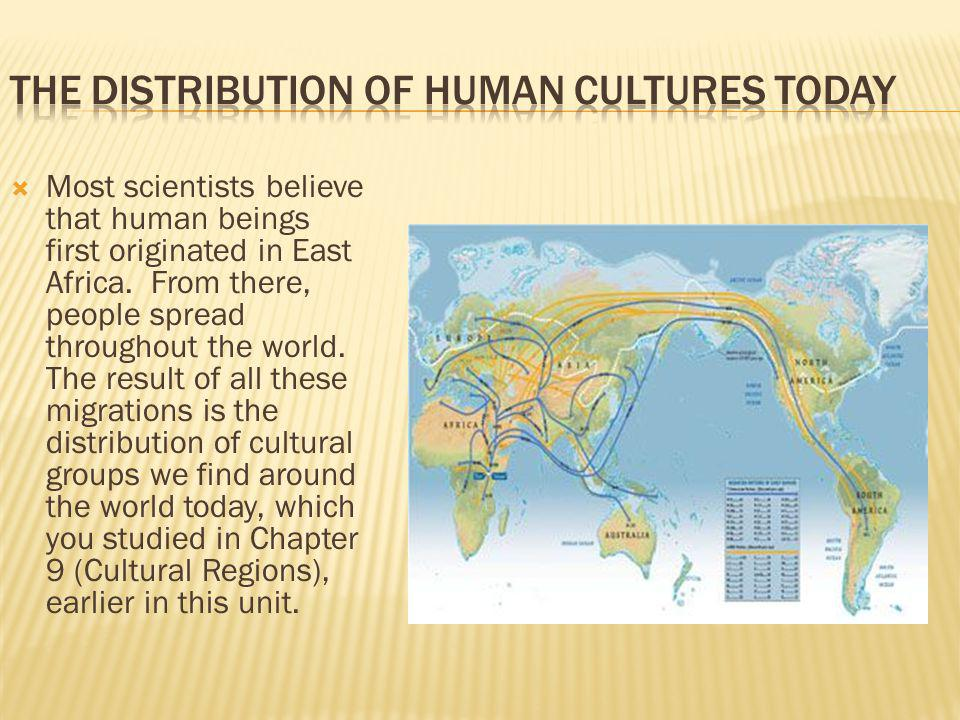 The Distribution of Human Cultures Today