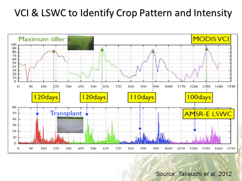 VCI & LSWC to Identify Crop Pattern and Intensity