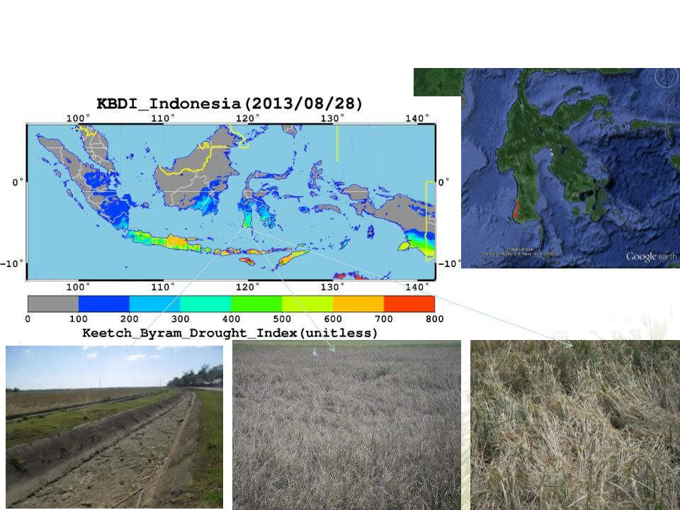 3. Ground survey for drought