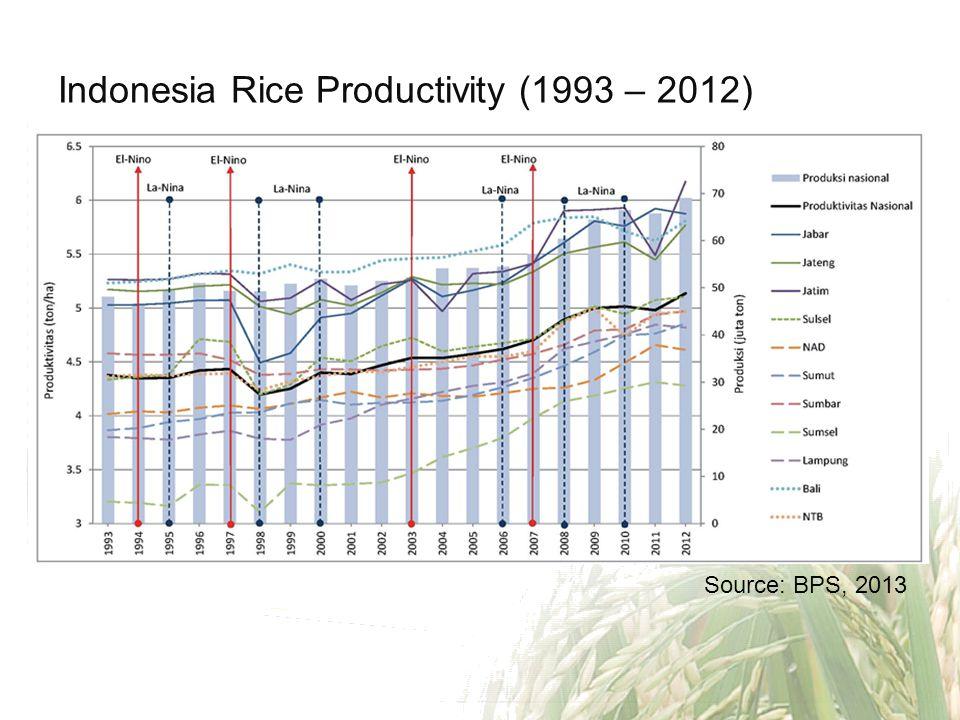 Indonesia Rice Productivity (1993 – 2012)