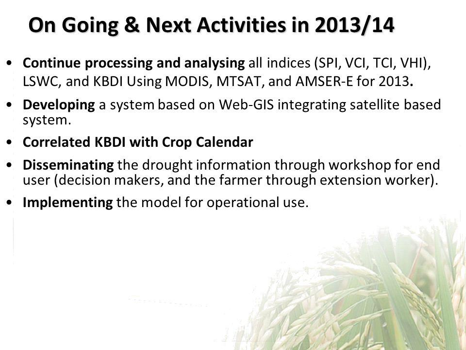 On Going & Next Activities in 2013/14