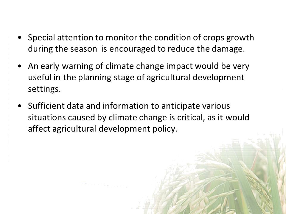 Special attention to monitor the condition of crops growth during the season is encouraged to reduce the damage.